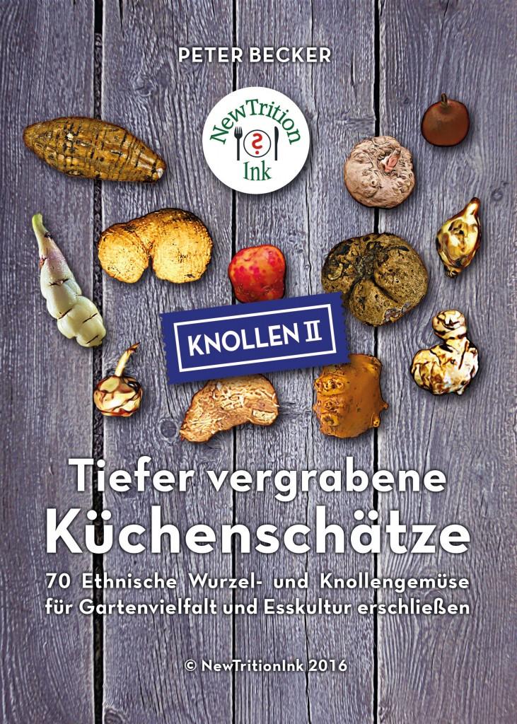 cover_kuechenschaetze_front